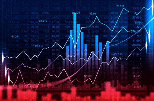 Elite Investimentos atualiza carteira semanal com TRPL4 e WEGE3