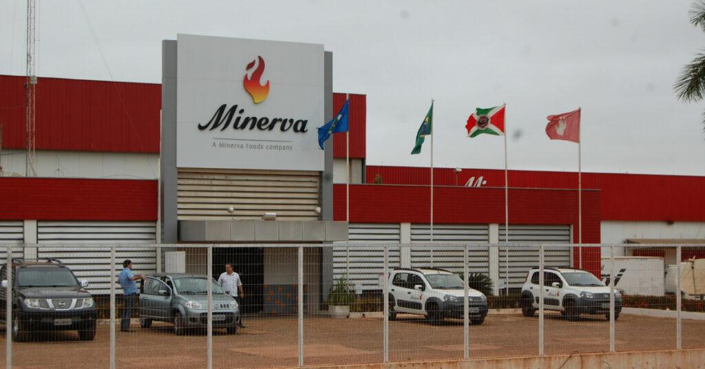 Minerva (BEEF3): cia passa de prejuízo para lucro no 2ºtri