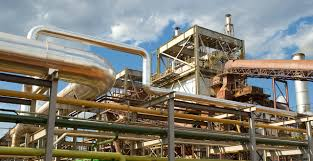 Biosev (BSEV3) reporta lucro líquido de R$ 311,6 mi, mas dívida cresce 11%