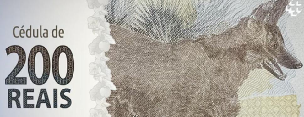 Banco Central apresenta nova cédula de R$ 200; nota homenageia lobo-guará